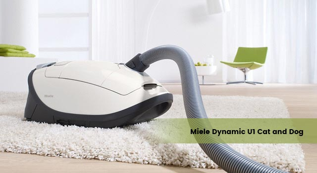 Miele Dynamic U1 Cat and Dog