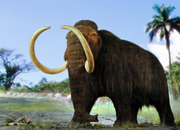Extinct Animals Facts
